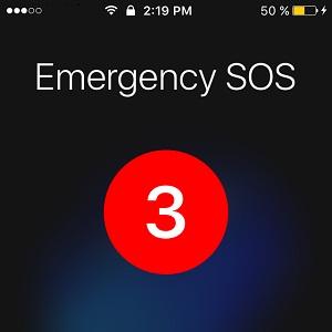 ICE_iOS10.2